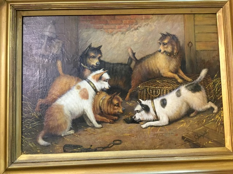 Oil on Canvas Five Terrier Dogs George ARMFIELD